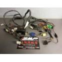 Faisceau electrique pour Suzuki GSF 600 BANDIT de 1995 a 1999